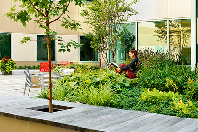 Recover-Green-Roofs-0017
