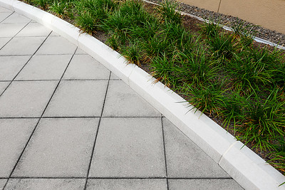 Recover-Green-Roofs-0023