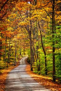 Color Road 2