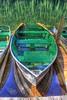 Sardine Row Boat