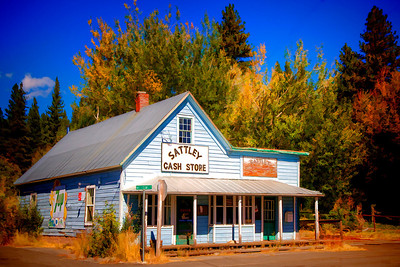 Sattley Cash Store