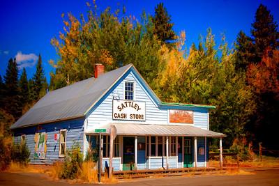 Sattley Cash Store
