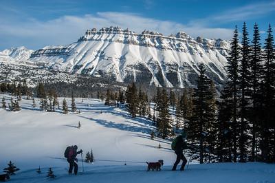 Crowfoot Glacier, Banff, Alberta - Medium