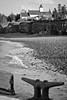 Margaretsville Low tide - Black & White