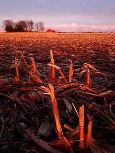 Sunset on an Indiana Harvest