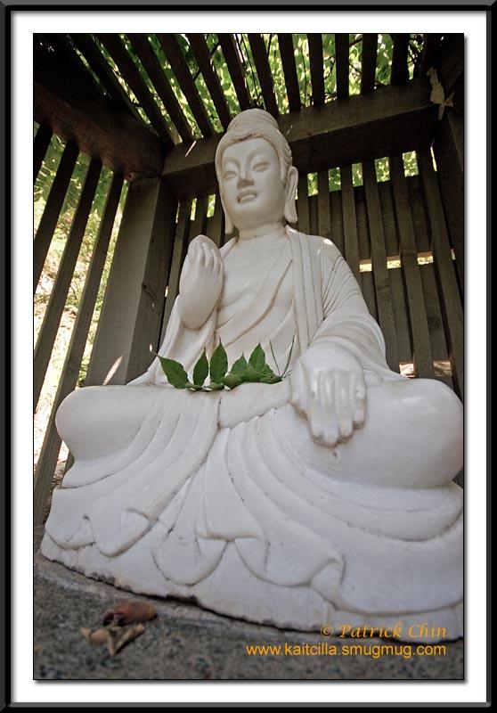 Buddha statue at the Japanese Garden.