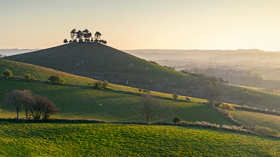 The sun burns off the morning mist at Colmer's Hill, Dorset, and the world awakens to a new spring day.