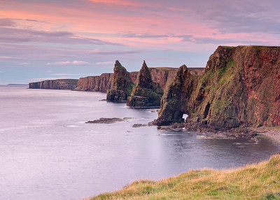 Duncansby Pinks