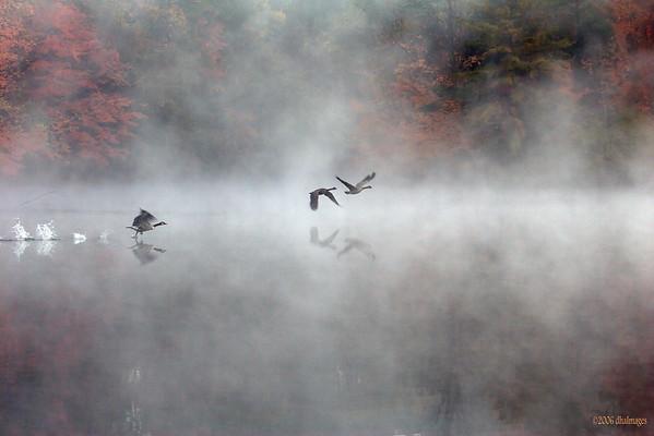 Autumn Ascent 2 (20051027)