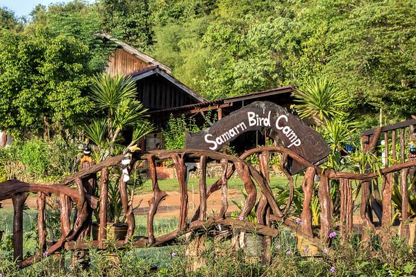 Samarn Bird Camp Thailand KKC