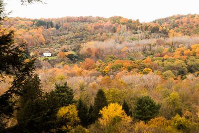 Ithaca Autumn Scene