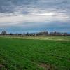 Rettland Farm (89 of 105)