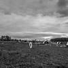Rettland Farm (75 of 105)