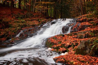 Hobbit Land Falls
