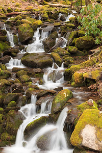 Roadside Cascades In The Smoky Mountains