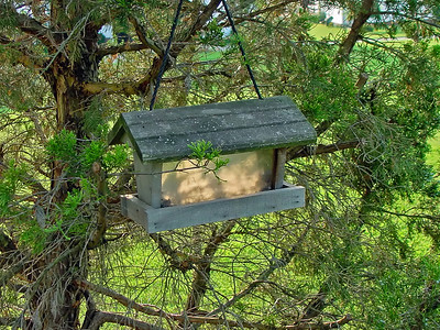 Nested bird feeder