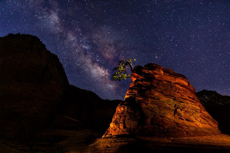 Zion National Park Milkyway