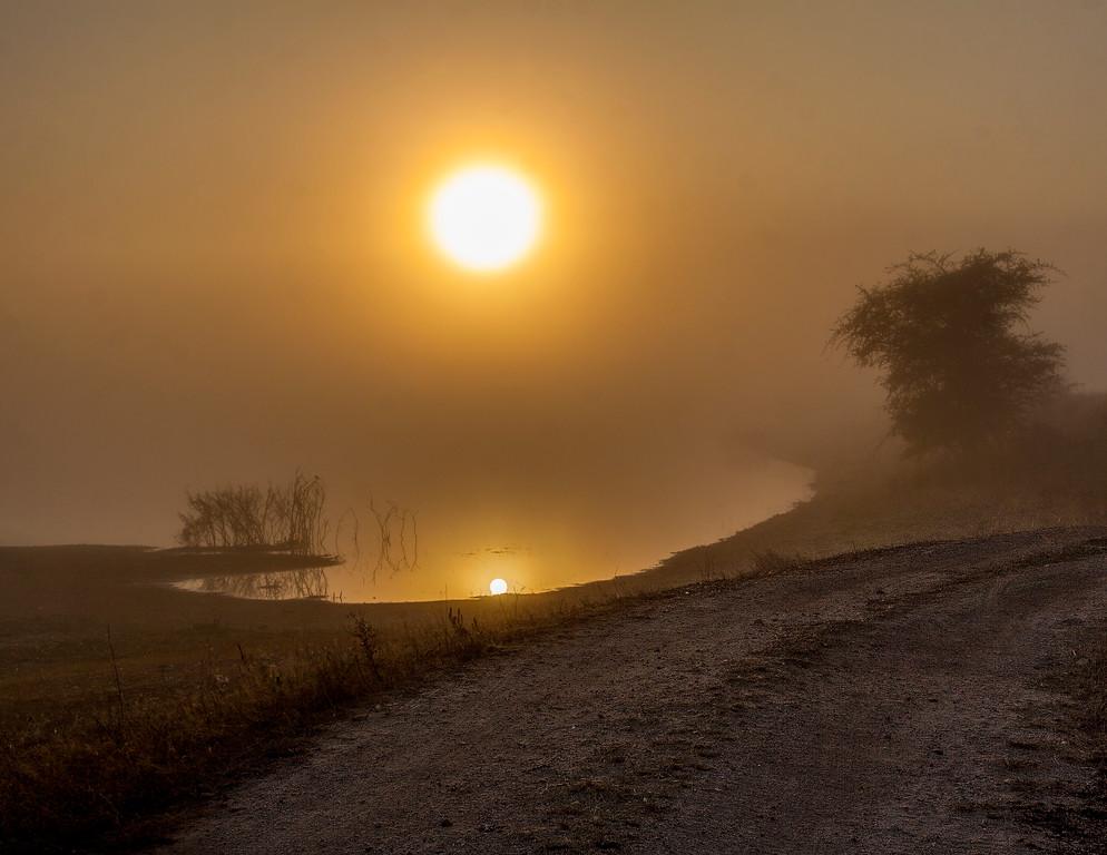 Ngala0716AM-6617 Foggy Morning