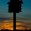 Pawleys_Birdhouse