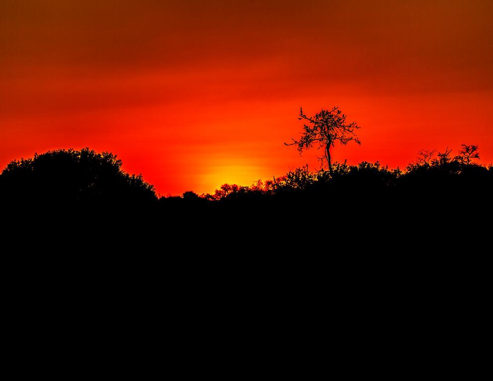 Ngala0714PM-8029 Lonely Sunset