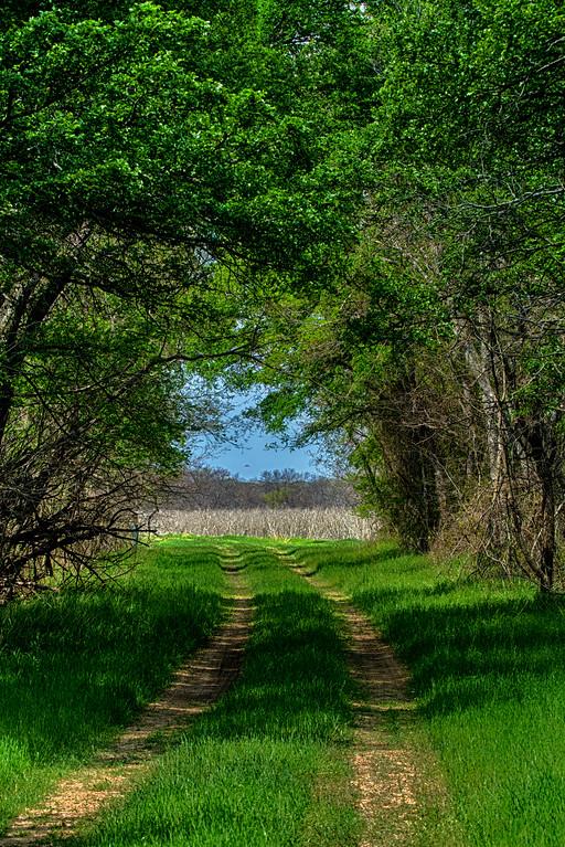 Hagerman_NWR 6290 (Raasch Trail)