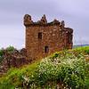 Urquart_castle