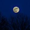 Moonrise Over Allen