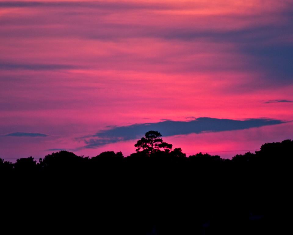 Sunset Silhouette-2798