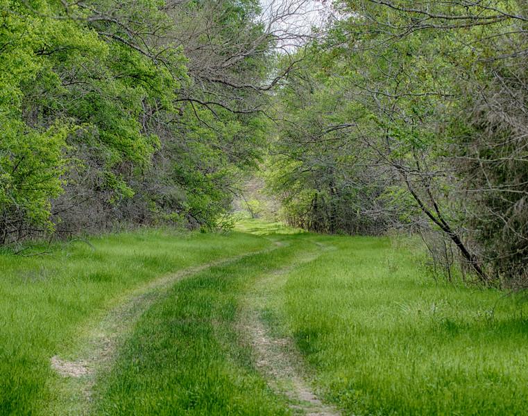 Hagerman_NWR-6286 Raasch Trail