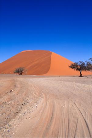 Sand Dune Namib desert