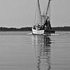 ShrimpboatReflection