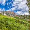 Colorado2016-6475 (AspenHillside)
