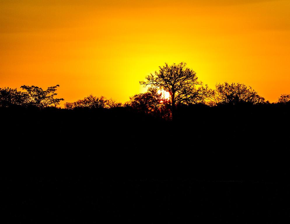 Ngala0713PM-7393 African Sunset