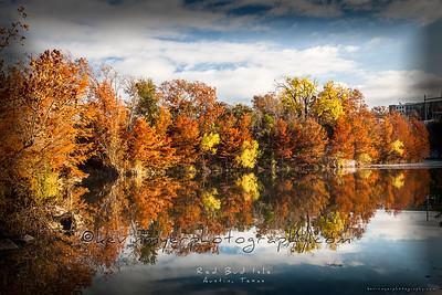 Autumn Image Gallery