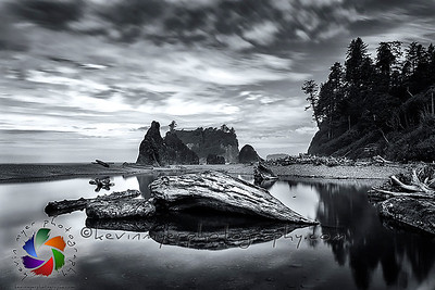 Olympic National Park, Washington Image Gallery