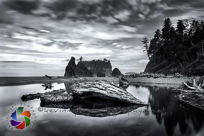 Olympic National Park, Washington Image Gallery