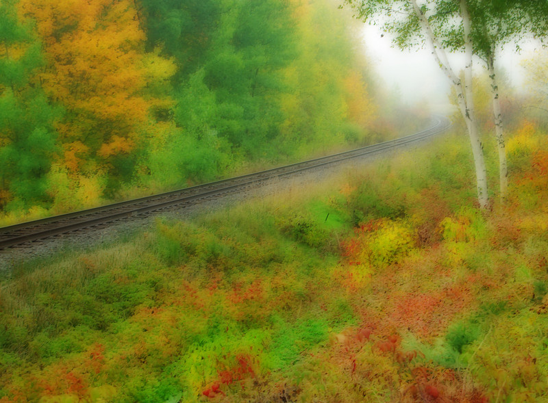 Rails on misty morn