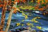 Rapids of blue