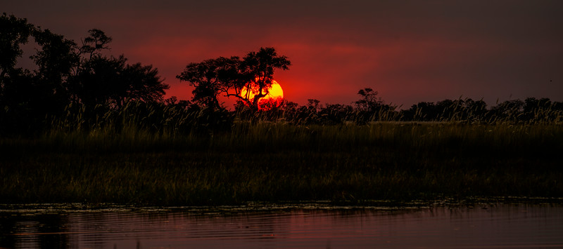 Primevil Sunset of the Okavango Delta