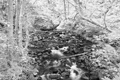 Stream at Latourell Falls