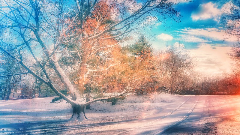 Feels like a Fantasy. Shot with Samsung Mobile Galaxy S7, Edited with Snapseed — at Goshen , New York.