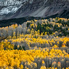Fall colors, Mt Wilson, Colorado, near Telluride