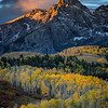 Fall colors, Dallas Divide, Colorado