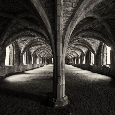 Fountains Abbey Cellarium Arches Spiders