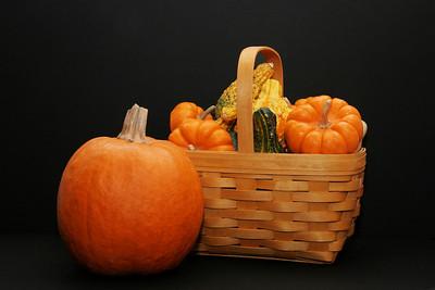Pumpkin Gourds and Basket