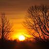 Orange Sun Rays