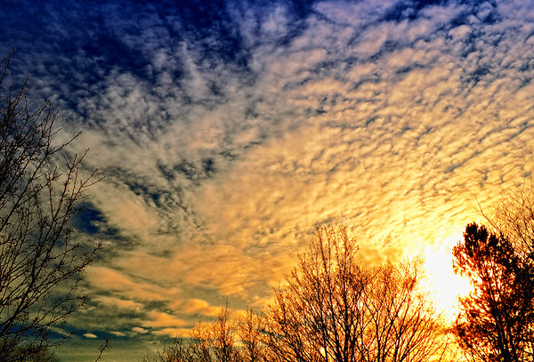 Sunset cirrocumulus clouds.