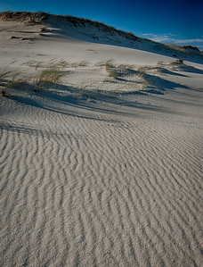 Provinceland Dunes