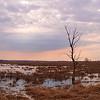 Sunrise at Horicon Marsh (20210322)