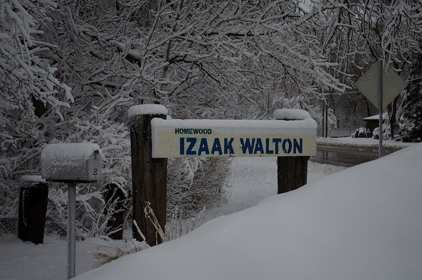 Izaak Walton Preserve Homewood Illinois